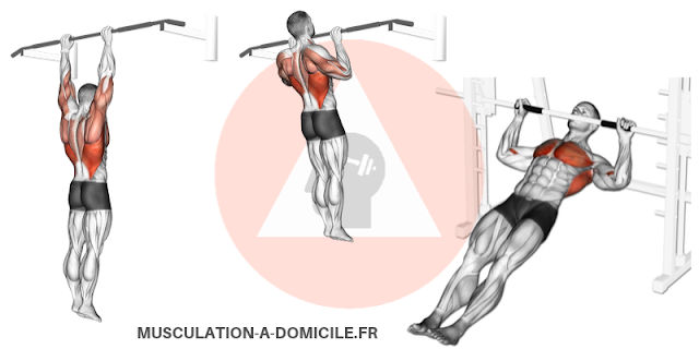 musculation-a-domicile-tractions-prise-pronation-traction-prise-supination-chin-up-pull-up