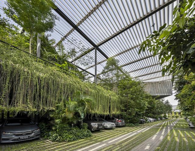 estacionamiento interior cubierto de vegetación y plantas colgantes