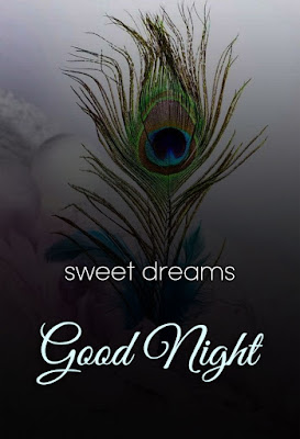 good night wishes and blessings image download photo