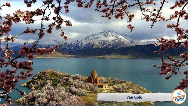 Van-Golu