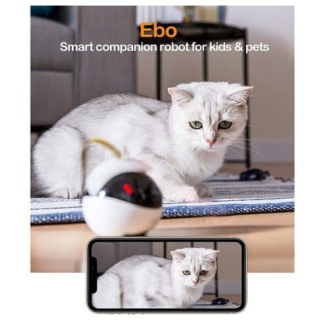 WINDEK Enabot Ebo Remotely Moving Security Robot Camera