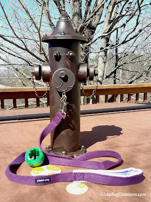 Planet Dog Shamrock & Hemp Leash #review #LapdogCreations ©LapdogCreations