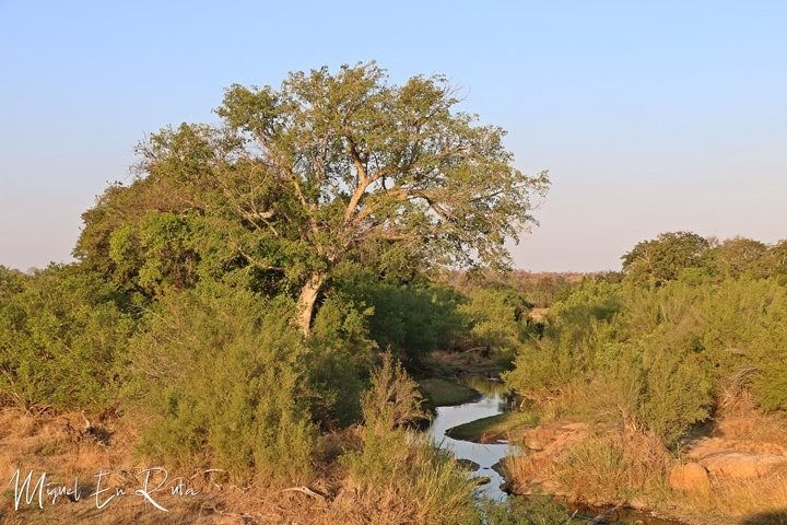 Sabie-River-Kruger-National-Park