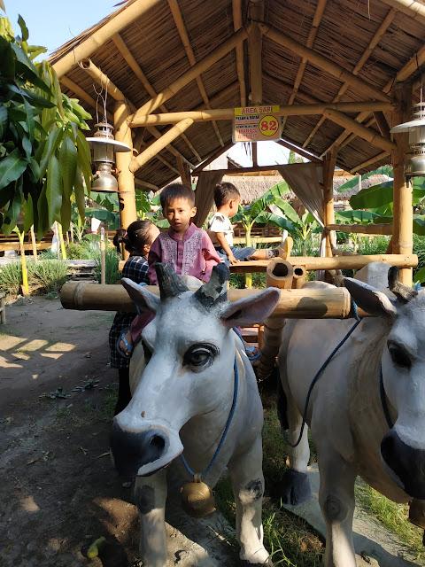 anak-anak-naik-delman-patung-sapi-di-kocokin-kebonan-pare
