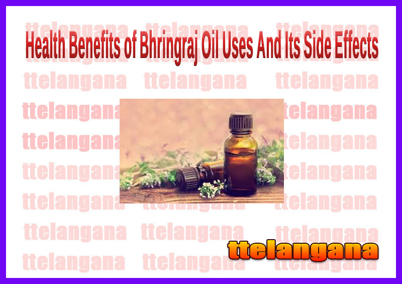 Health Benefits of Bhringraj Oil Uses And Its Side Effects