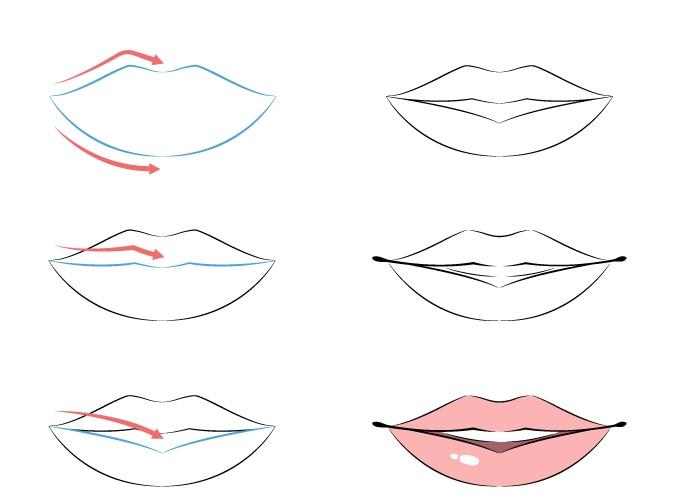 Contoh struktur bibir anime