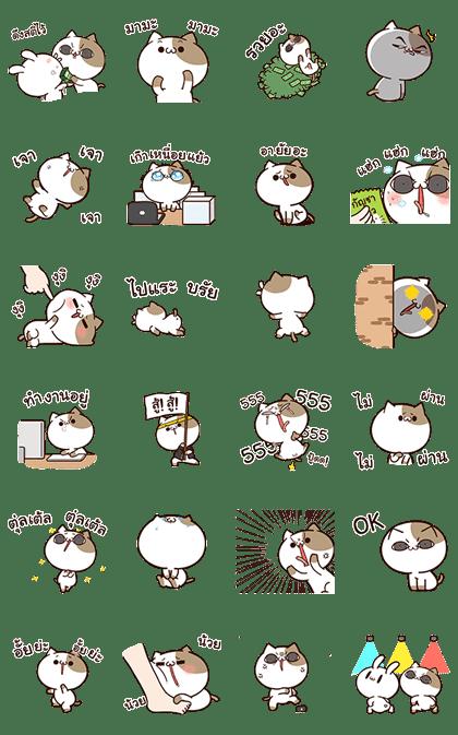 Tofu Cat Animated
