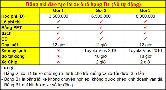 Bảng giá đào tạo lái xe ô tô hạng B1 (Số tự động)