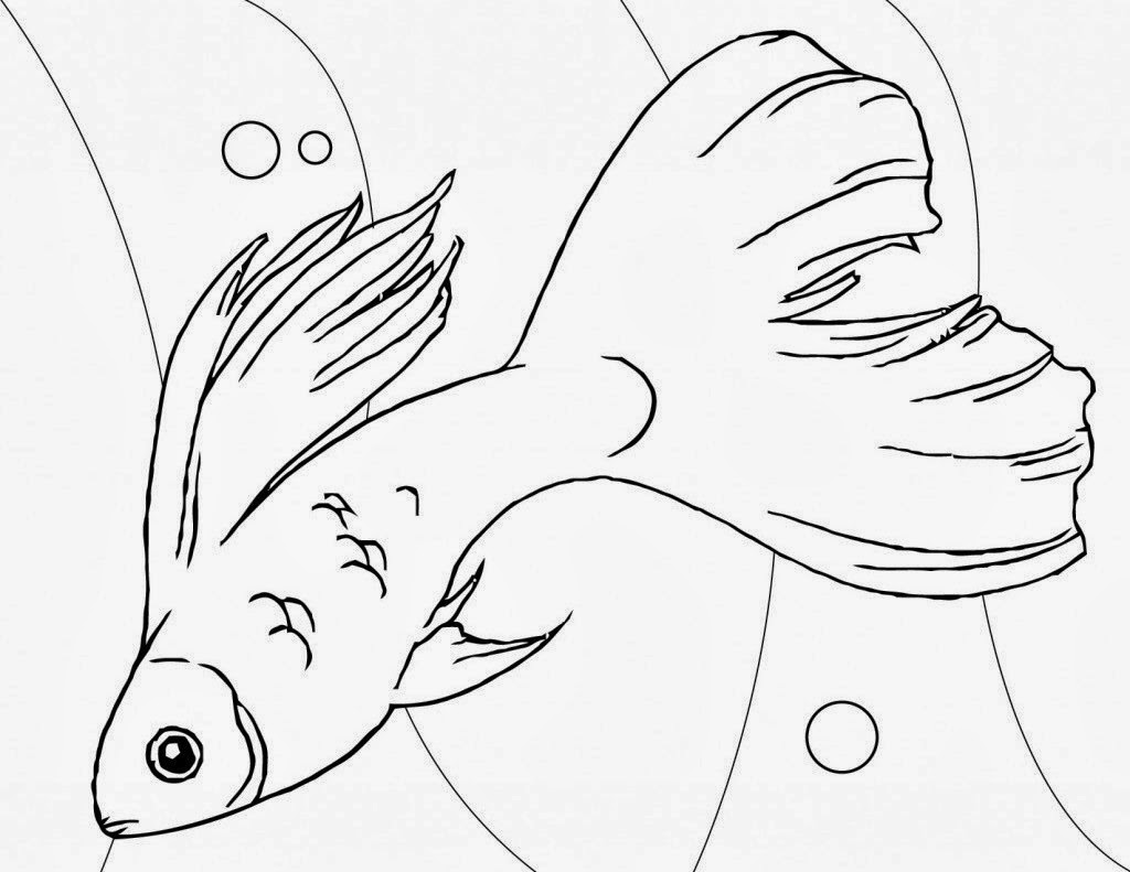Fish Head Coloring Pages