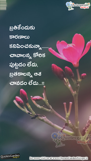 Best Love quotes in telugu latest