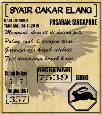 SYAIR SINGAPORE 24-11-2019