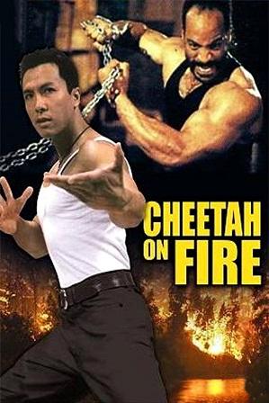 Cheetah on Fire (1992) 300MB Full Hindi Dual Audio Movie Download 480p Web-DL Free Watch Online Full Movie Download Worldfree4u 9xmovies