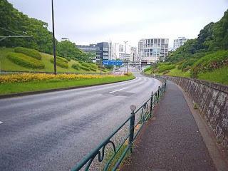 代々木公園前道路