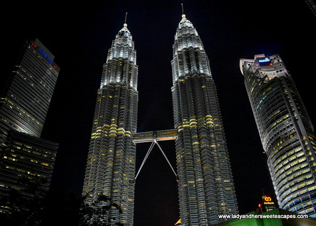 The Petronas Towers shines at night