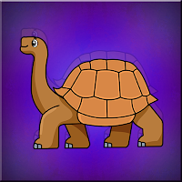 Galapagos Tortoise Escape…