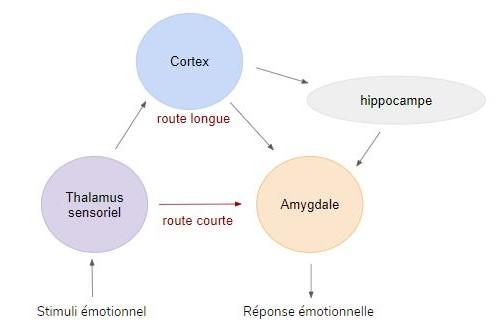 angoisse anxiété peur hypnose, Laurie Le Borgès, hypnotherapeute Paris 10, hypnose paris 10, Stress Post traumatique, trouble anxieux, stress