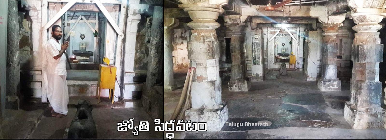 జ్యోతి సిద్ధవటం - siddavatam