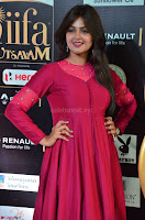 Monal Gajjar in Maroon Gown Stunning Cute Beauty at IIFA Utsavam Awards 2017 017.JPG