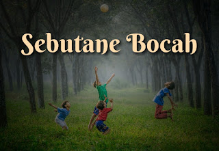 Alternative Sebutane Bocah