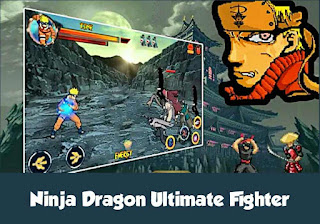 Ninja dragon ultimate fighter
