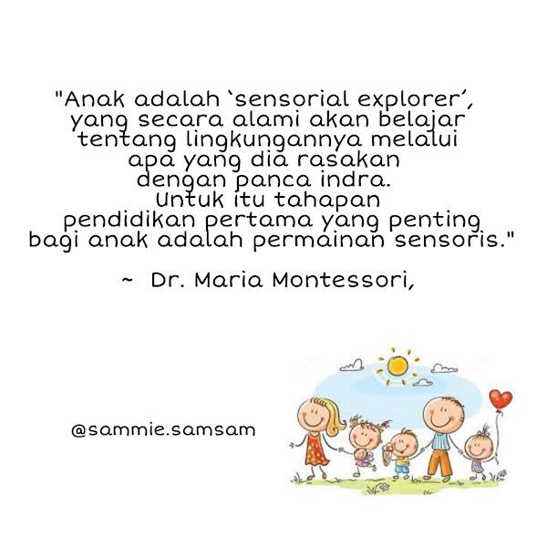 Montessori Adalah? Mainan Montessori Indonesia