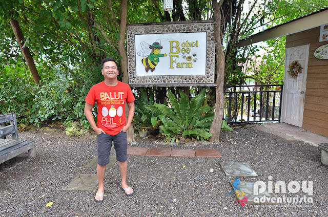 TOP THINGS TO DO IN BOHOL TOURIST SPOTS