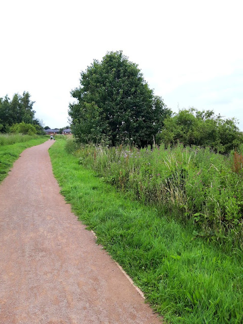 A photo showing a terracotta coloured gravel path through a meadow.  The sky is grey and the path is bordered by grass and trees