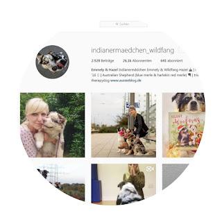 screenshot indianermädchen und wildfang instagram