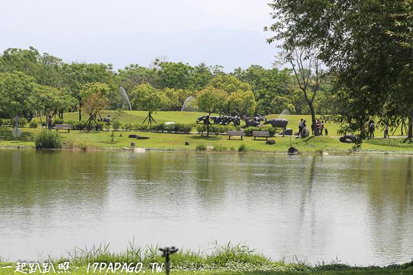 景觀池,旁邊有大草原區可以奔跑或放風箏,步道可以散步騎自行車,休閒的好地方