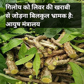 गिलोय के फायदे बताएं,गिलोय के नुकसान,गिलोय सेवन विधि,गिलोय की लकड़ी के फायदे,गिलोय घनवटी कब खाना चाहिए,गिलोय के पत्ते के फायदे,गिलोय,तुलसी के फायदे गिलोय के फल के फायदे,Ayush mantralaya products,www.ayush.gov.in 2021,Siddha in ayush,AYUSH medicine List,AYUSH full form,AYUSH Registration Ministry of AYUSH,Yoga AYUSH - Wikipedia  Related searches,Giloy Tablet,Giloy Nutrition,Giloy benefits,Giloy juice,How to use Giloy,Giloy tree,Giloy side effects,Giloy Wikipedia