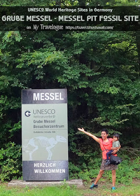 UNESCO World Heritage Sites in Germany Messel Pit Fossil Site Pinterest