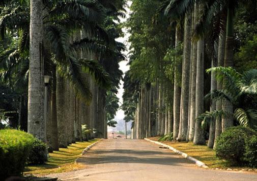 Aburi Botanical Gardens specialty in Accra, Ghana