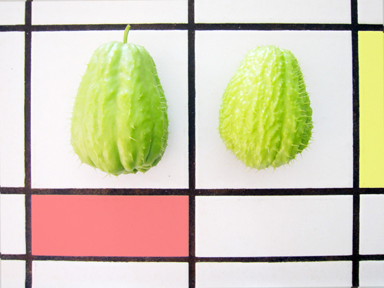 Chayote Whole Foods