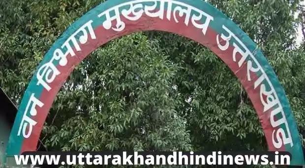 Uttarakhand News Today: चमोली में वन विभाग की टीम पर हमला, भालू की मौत
