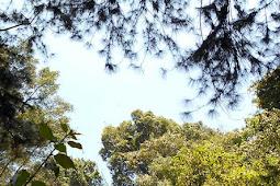 Mengapa Langit Berwarna Biru dan Awan Berwarna Putih