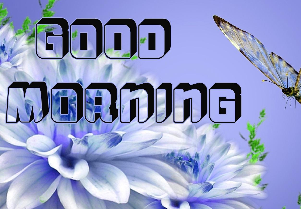 g00d morning