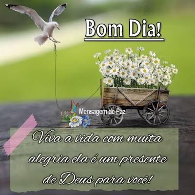 Viva a vida com muita alegria  ela é um presente de Deus   para você!  Bom Dia!