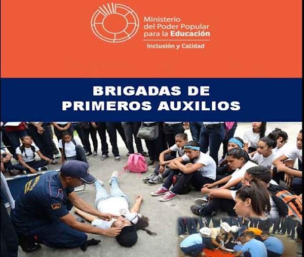 CONFORMACIÓN DE BRIGADAS DE  PRIMEROS AUXILIOS: ORGANIZACIÓN Y FUNCIONES DE LAS BRIGADISTA Y LOS  BRIGADISTAS