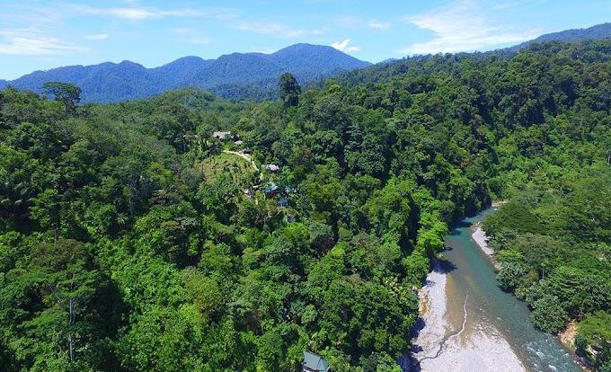 Yuk, Berpetualang Ke Bukit Lawang Di Langkat, Sumatera Utara