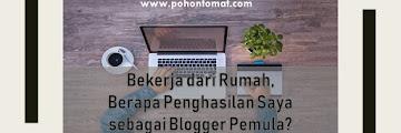 Bekerja dari Rumah, Berapa Penghasilan Saya sebagai Blogger Pemula?