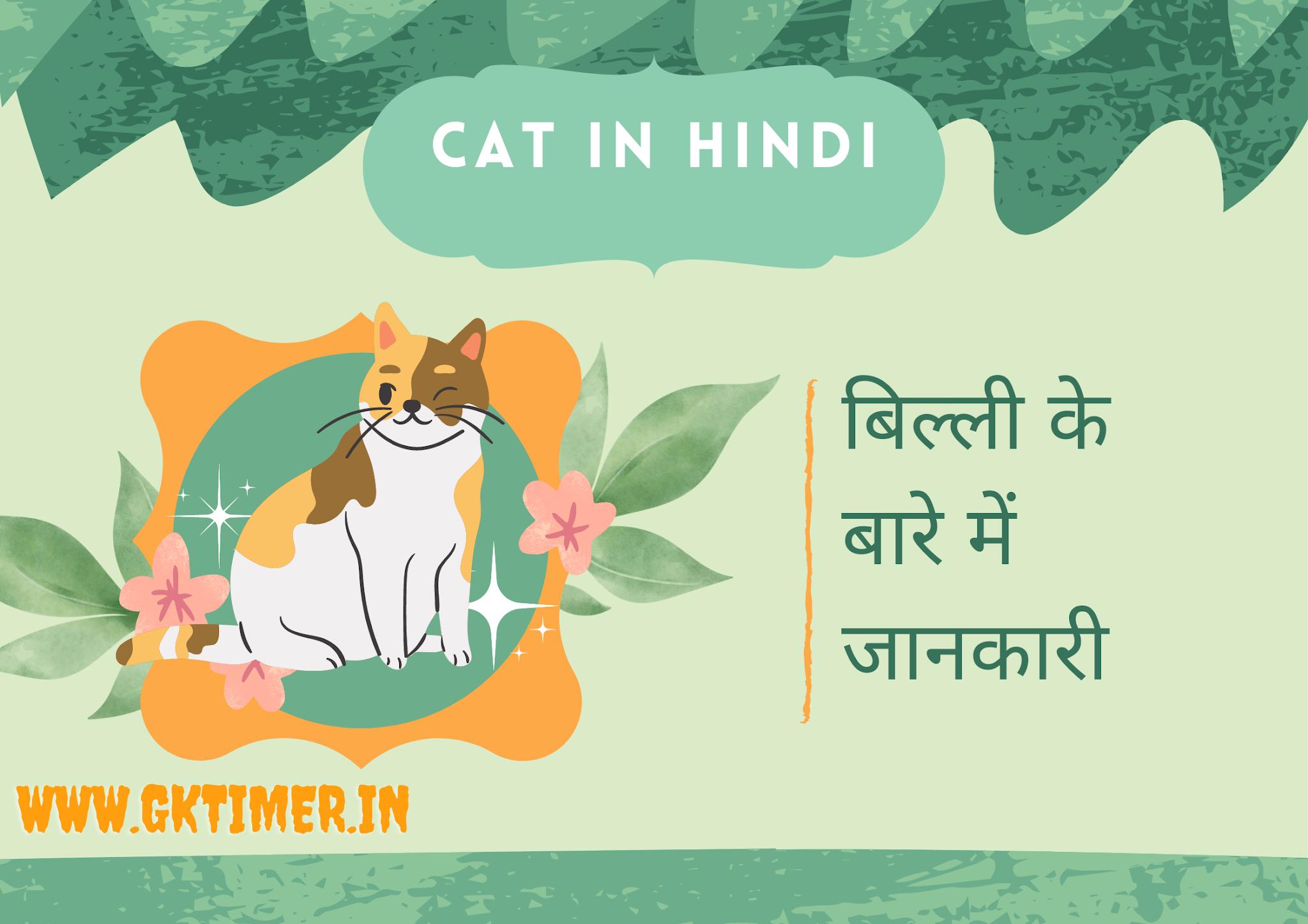 बिल्ली के बारे में 10 पंक्तियाँ | Cat in Hindi : 10 Lines on Cat in Hindi