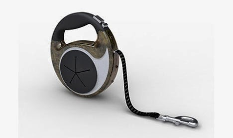 Electronic Dog Collars Jack Russells
