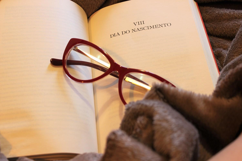 o conto da aia livro