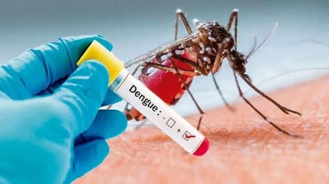 ડેંગ્યુ શું છે અને તેના કારણ, નિદાન અને લક્ષણો | What is Dengue in Gujarati ?