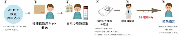 JAL domestic COVID-19 PCR test flow