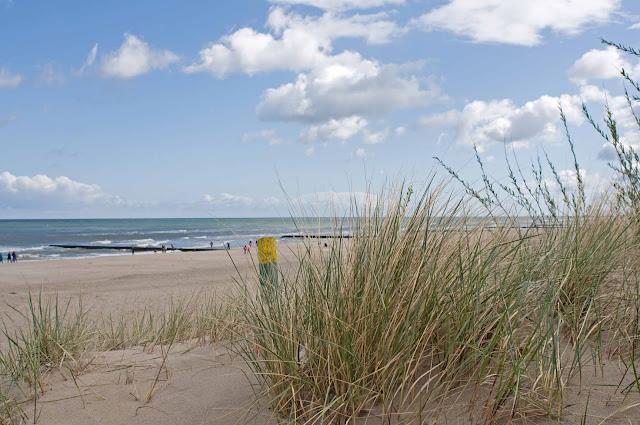plaża w Łebie, falochrony, trawa, wydmy