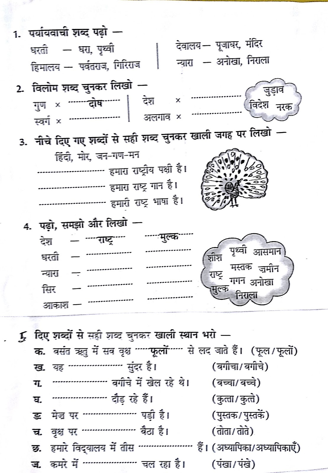 Hindi Grammar Work Sheet Collection For Classes 5 6 7 Amp 8 Different Grammar Concepts As Gender