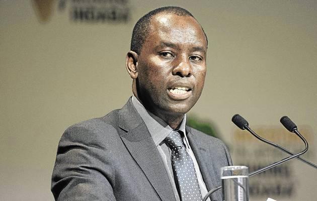 Minister Mosebenzi Zwane MEC for human settlements