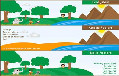 komponen biotik dan abiotik, komponen ekosistem, pengertian komponen ekosistem biotik dan abiotik