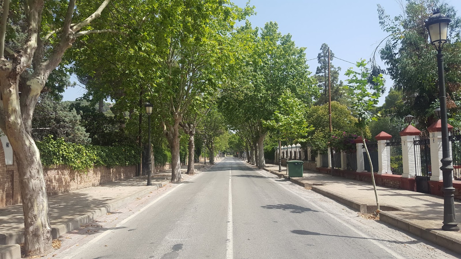 Tree-line avenues leading out of the village of Nàquera, Valencia, Spain